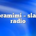 soramimi – Slam Radio